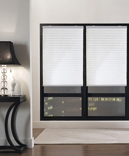 Cordless Pleated Roller Shades