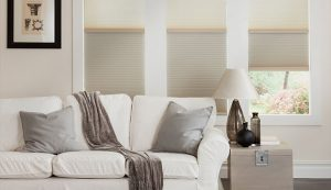 Honeycomb Blinds Vs. Pleated Shades